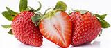 딸기 프로모션